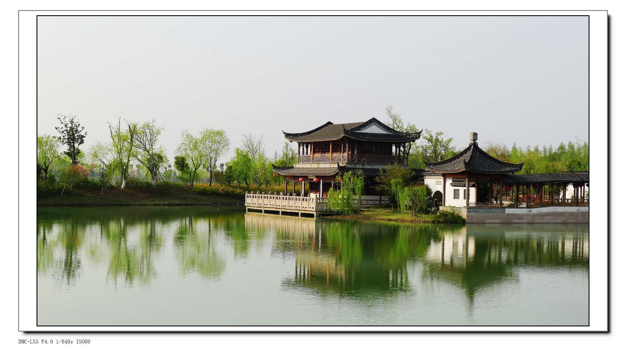 乱花渐欲迷人眼 正是江南好风景 尚湖随拍 - 摄